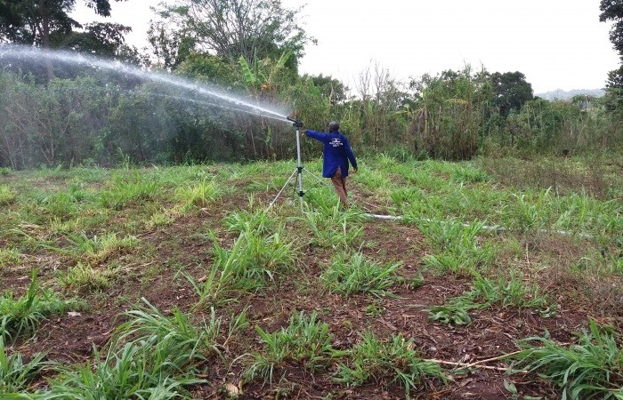 Shs148 billion earmarked for irrigation