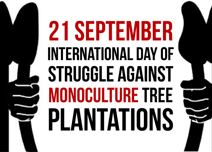 Witness Radio – Uganda, Community members from Mozambique and other organizations around the world say NO to more industrial tree plantations