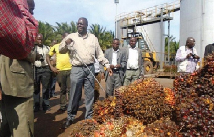 Bidco's expansion to Buvuma Island gains momentum