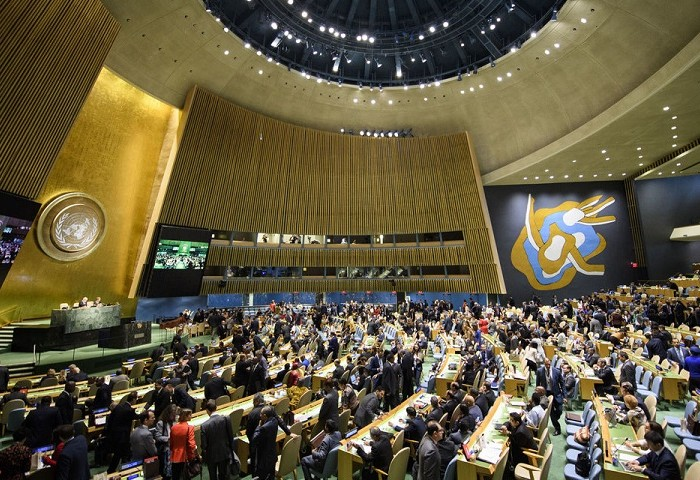 UN General Assembly Receives Peasants' rights declaration