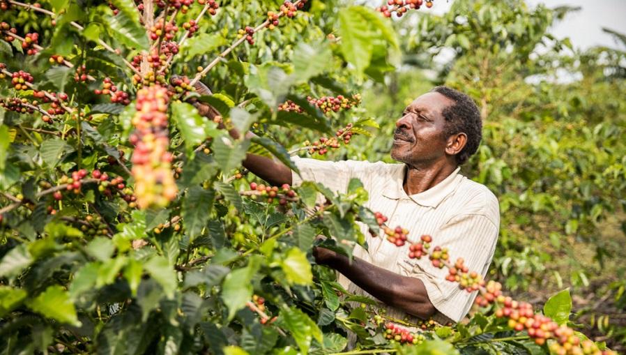 HRNS_Uganda_0890-1080x675