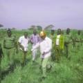Kiryandongo Evictions