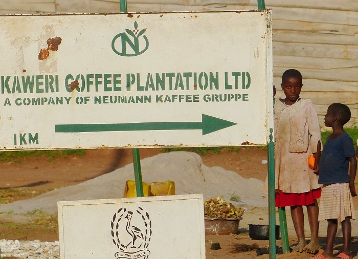 Support the Evictees Against the Neumann Kaffee Gruppe and Government of Uganda