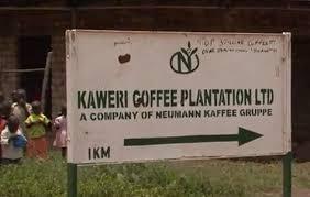 Kaweeri sign post photo (1)