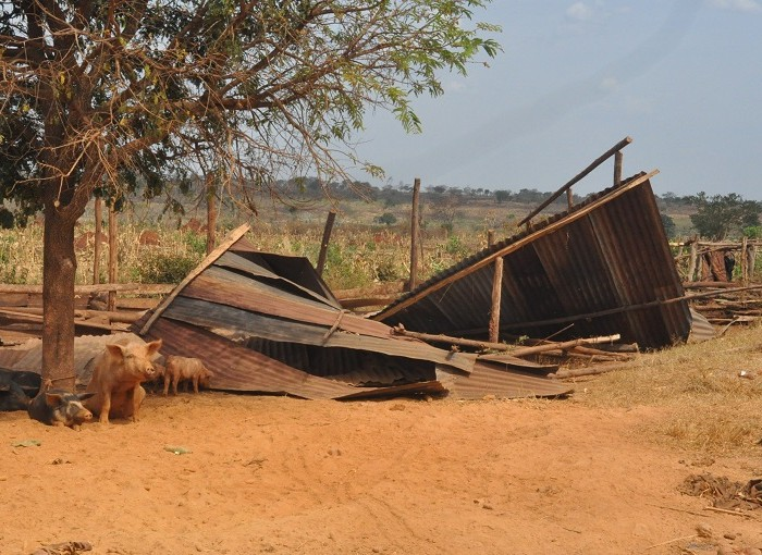Report Names 3 Investors in Kiryandongo Evictions
