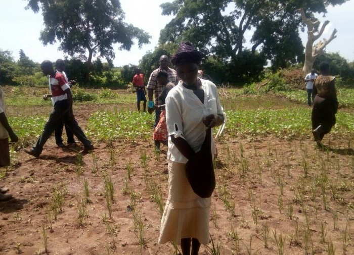 Lira farmers shun community stores