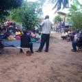 Mamali photo 2