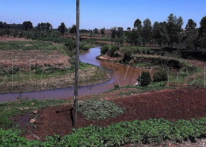 Water depletion looming in Elgon region