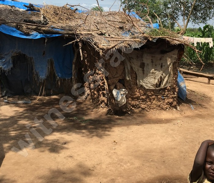 Uganda: NGO claims Agilis Partners & Great Seasons violently evicted locals to pave the way for agribusiness; Agilis Partners responds