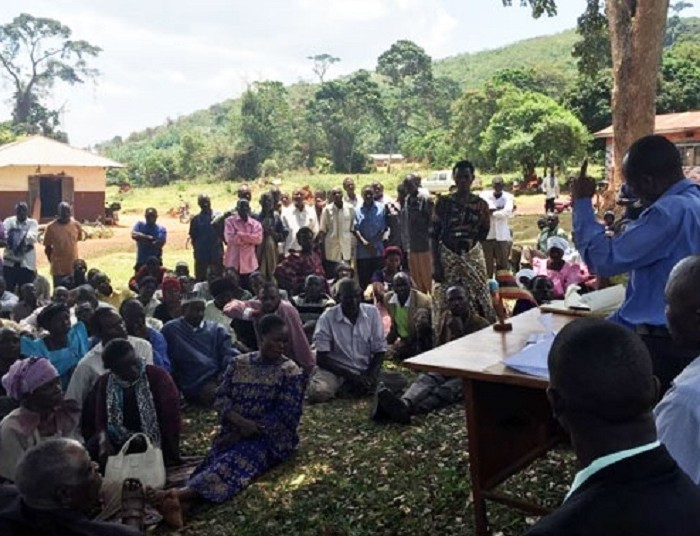 Oil palm growing: New twist as Buvuma residents disown group over compensation
