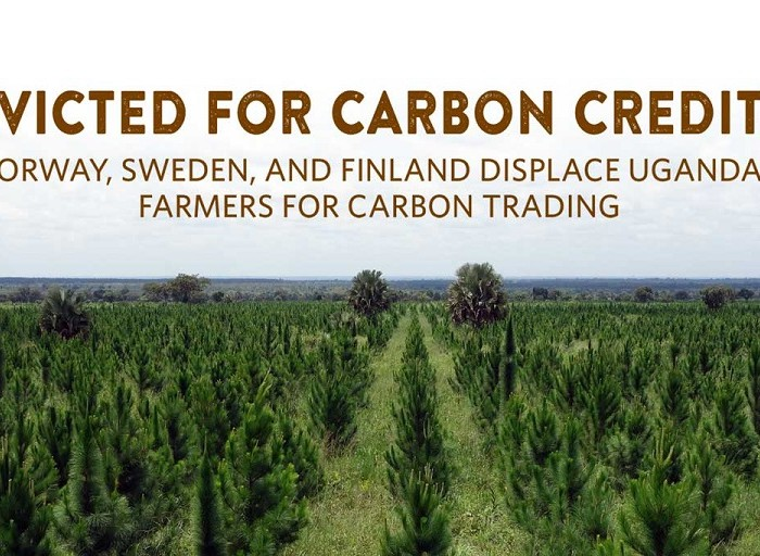 Two EU member states, Norway named for aiding land eviction for carbon credit trading