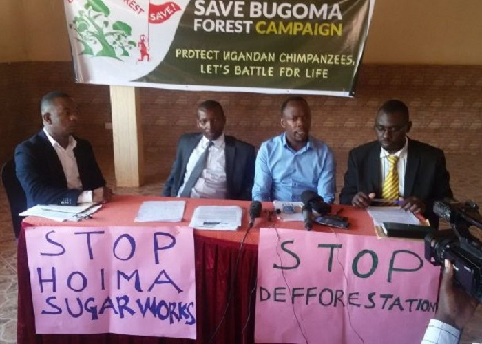 Hoima Sugar loses 13 sq miles as NEMA toughens on Bugoma land takeover