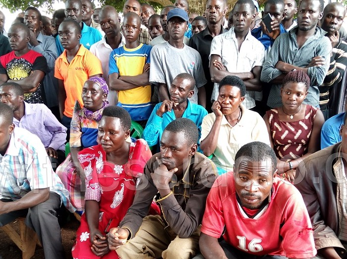 Double jeopardy as former Kaweeri Coffee Plantation limited evictees face land eviction once again from where they were settled