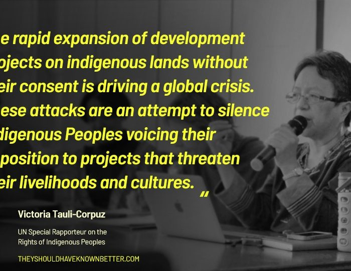 "Unprecedented Wave of ""Criminalization"" Sweeping the Globe to Silence Indigenous Peoples"