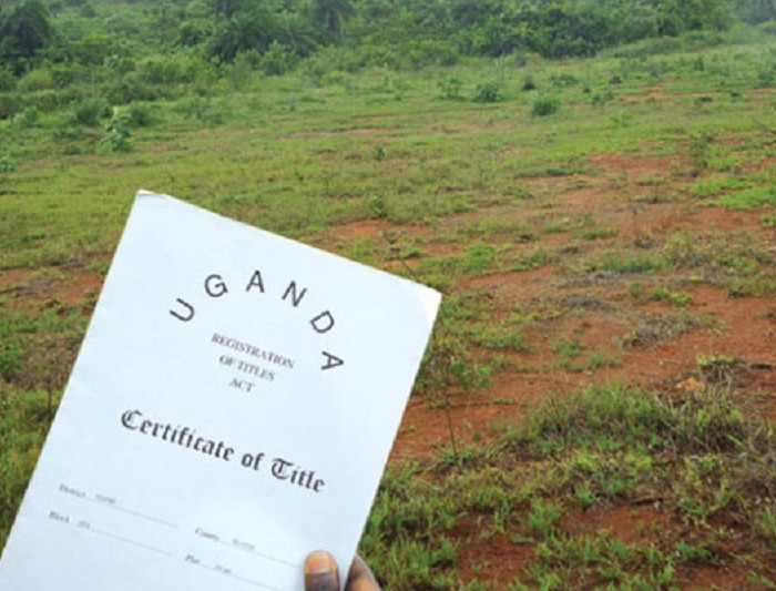 A certificate of private mailo title was created and changed three times in an hour to evict over 3000 inhabitants