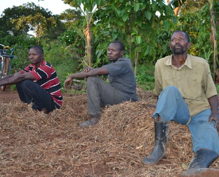 Luweero residents fear eviction from Bigirimana's land
