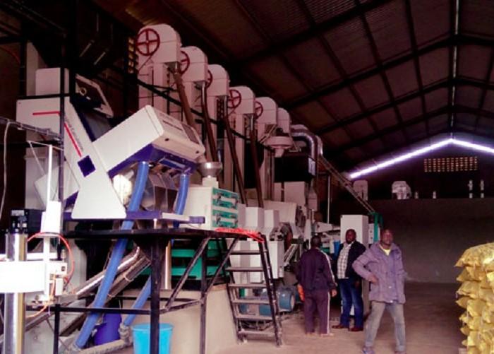 57 rice companies fold operations