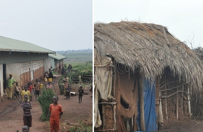 COVID-19 land evictions: Agilis Partners Evictees are being evicted again from their temporary shelter