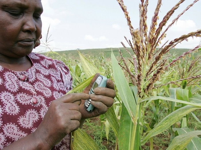 New digital tool to empower farmers to access extension services